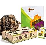 Cat increíble-Mejor Interactivo Gato Juguete Nunca. Treat Maze & Puzzle comedero para Gatos