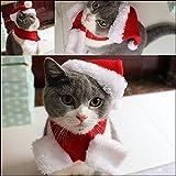 Pet Leso - Gorro de Papá Noel con silenciador para Perro, diseño de Gato, Color Rojo