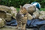 Rastreador de Mascotas Mini Girafus® Pro-Track-Tor Localizador con Ondas de Radio Anti-Pérdida Gato, Perro – 2 transmisor + Cargador Incluido