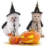 Disfraces de Halloween para perro, divertido disfraz de gato de Halloween con sombrero de brujas impreso, disfraz de perro para cachorros, cosplay, decoraciones de fiesta de Halloween