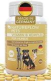 Complejo de Vitamina B Perros -Alta dosis de vitamina B para perros a partir de 15kg, 120 Comprimidos de vitaminas para perros, Suplemento perro con K3, ácido fólico, calcio y biotina, Made in Germany