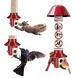 Roamwiild Roamwild - Comedero Cardinal para pájaros (Semillas Mixtas), diseño de Girasol
