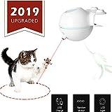 WLMall Juguetes para Gatos, 2 en 1 Juguetes Plumas Interactivos y LED Luz Giratorios Automáticos (Recargable USB), Gatos estimulantes Instinto de Caza/Proporciona Entretenimiento (Verde)