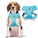 BINGPET BB5001 - Arnés de Malla Suave para Perro y Mascota, arnés Acolchado Ajustable