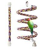 petsvv cuerda Bungee pájaro juguete