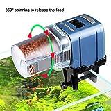 Codia, alimentador automático de alimentos para peces, funciona con pilas, temporizador de peces, 4 veces máximo al día, capacidad ajustable, pantalla LCD