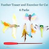 Juego de 5 plumas de gato retráctiles de 99 cm, plumas interactivas variadas, mariposas, libélulas para gatito, con cuerda de 40 cm