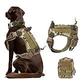 nobrand Arnés de perro táctico militar arnés de perro de trabajo chaleco Molle chaleco de entrenamiento ajustable Patrol K9 arnés con asa y una bolsa MOLLE. (L, CP camuflaje)