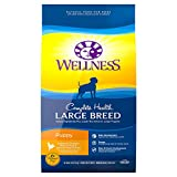 Bienestar Total Salud Natural Seco Perro Alimentos
