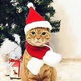Pet Leso Sombrero de Navidad para gato, diseño de Papá Noel, color rojo -S