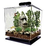 Tetra 29095 Cube Aquarium Kit, 3-Gallon by Tetra