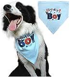 BINGPET Pañuelo de cumpleaños para perros pequeños, medianos y grandes, color azul