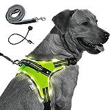 MelonTail - Arnés con luz para perro con correa elástica - Chaleco de luz LED recargable para pasear por la noche - Arnés reflectante iluminado para mayor visibilidad - Chaleco iluminado para perros