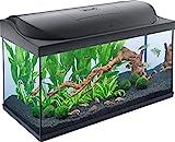 Tetra Starter Line LED Acuario 105 L - Juego completo que incluye iluminación LED, un acuario estable para principiantes con tecnología, alimentos y productos de cuidado, negro
