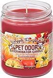 Velas en tarro eliminadoras del olor a mascota