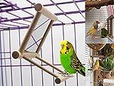 Old Tjikko Columpio para pájaros, Jaula de Loro, Juguetes, Columpio para Colgar con Espejo para macachas Grises africanas, periquitos cacatúas, Conos de cacatúa, pájaros, Canarios