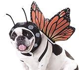 Animal Planet Disfraz de Mariposa para Perro, tamaño Mediano