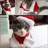 Pet Leso - Gorro de Navidad con silenciador, Color Rojo