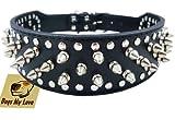 DML Collar de Perro con Tachuelas de Piel sintética Negra de 48,26 cm a 55,88 cm de Ancho, 37 Pinchos 60 Tuercas, Pitbull, Boxer