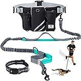 SHINE HAI - Correa de perro retráctil, reflectante, de alta resistencia, correa para caminar de 40 cm, perfecta para perros pequeños grandes y medianos de hasta 110 libras, sistema de bloqueo de rotura y bloqueo, color azul