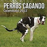 Calendario Perros Cagando 2022: Regalos Gracioso Para Amantes de los Perros | Regalo de Broma | Divertidos Para Amigos, Mujer, Hombre, Niños, Adolescentes, Adultos, Cumpleaños, Navidad