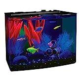 GloFish 29045Kit Acuario con luz LED Azul, 5-Gallon