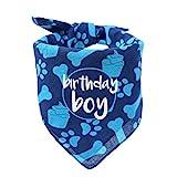 Hecho Dog Bandana de cumpleaños para niño