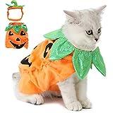 Legendog - Disfraz de gato y perro para Halloween con diseño de calabaza - Divertido traje para mascotas