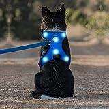 Domi Arnés de perro LED recargable por USB, arnés reflectante sin tirones, chaleco suave acolchado ajustable para perros pequeños, medianos y grandes (S, azul)