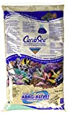 caribsea arag-Alive 20-Pound Fiji Rosa Arena
