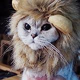 Bello Luna Peluquería de cabello para perros pequeños y gatos, Peluca de león Peluca para cachorros Cosplay de Halloween