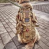 QZY Chaleco de Perro Táctico, Entrenamiento de Combate Molle Chaleco con 3 Bolsas Desmontables-4 Tamaños y Colores,Brown,L