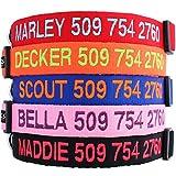 GoTags Collares Personalizados Personalizados Bordados con Nombre de Mascota y número de teléfono para Perros Grande Multicolor Rojo, Azul, Naranja, Negro y Rosa