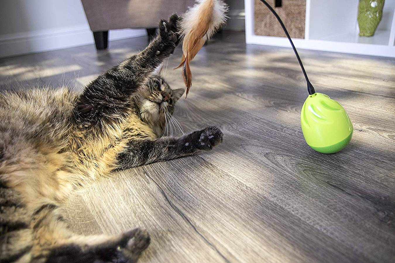 Mejores juguetes interactivos para gatos