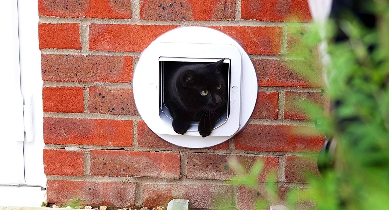 Mejores gateras - puertas para gato