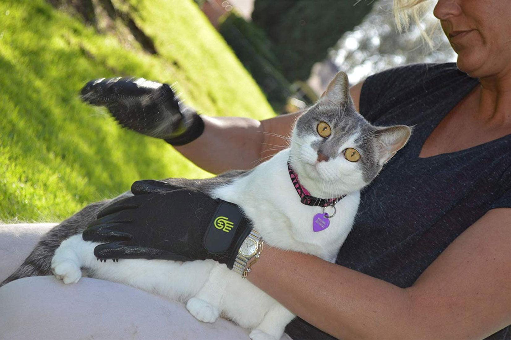 Los mejores guantes para cepillar gatos