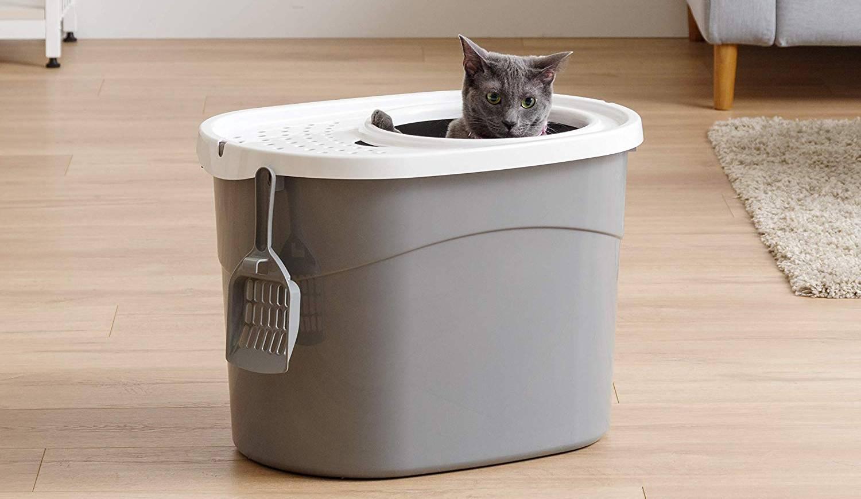 Caja de arena para gatos higiénica con entrada superior de IRIS