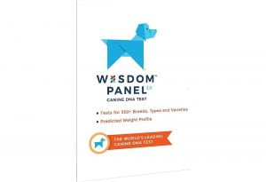 Wisdom Panel 2.0: Test de ADN para razas de perro 1