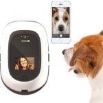 PetChatz: analisis del intercomunicador para mascotas