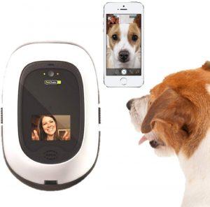 PetChatz: análisis del intercomunicador para mascotas 2