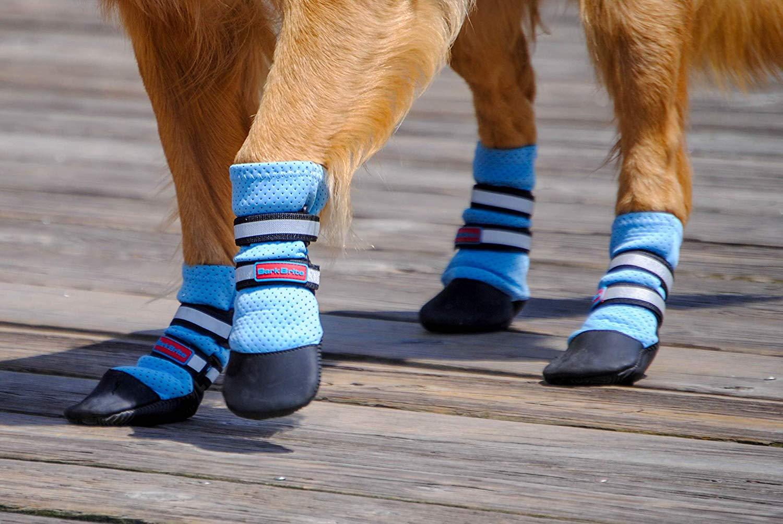 Las mejores botas para perros