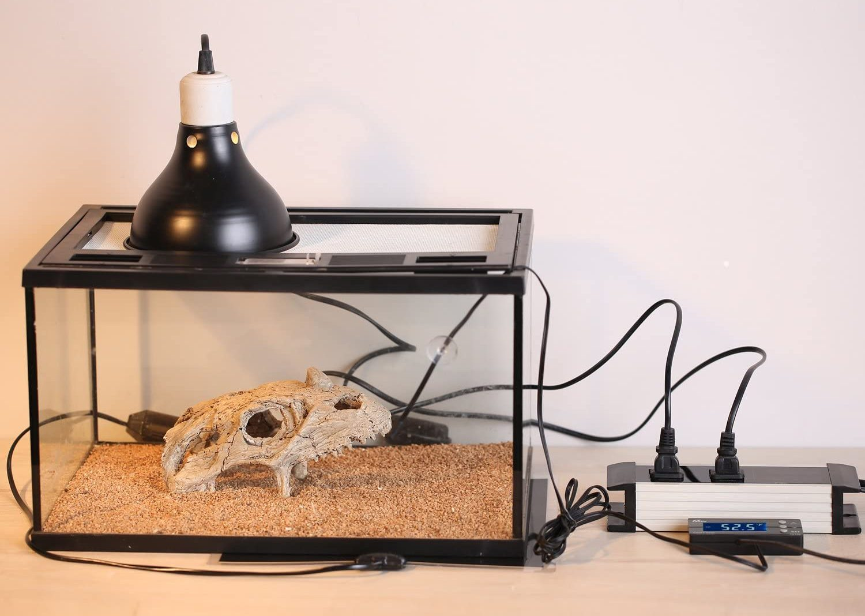 Mejores termostatos para reptiles [year] (Análisis) 1