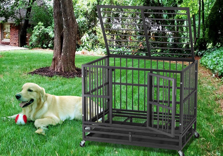 Las mejores jaulas resistentes para perros [year] (análisis) 1