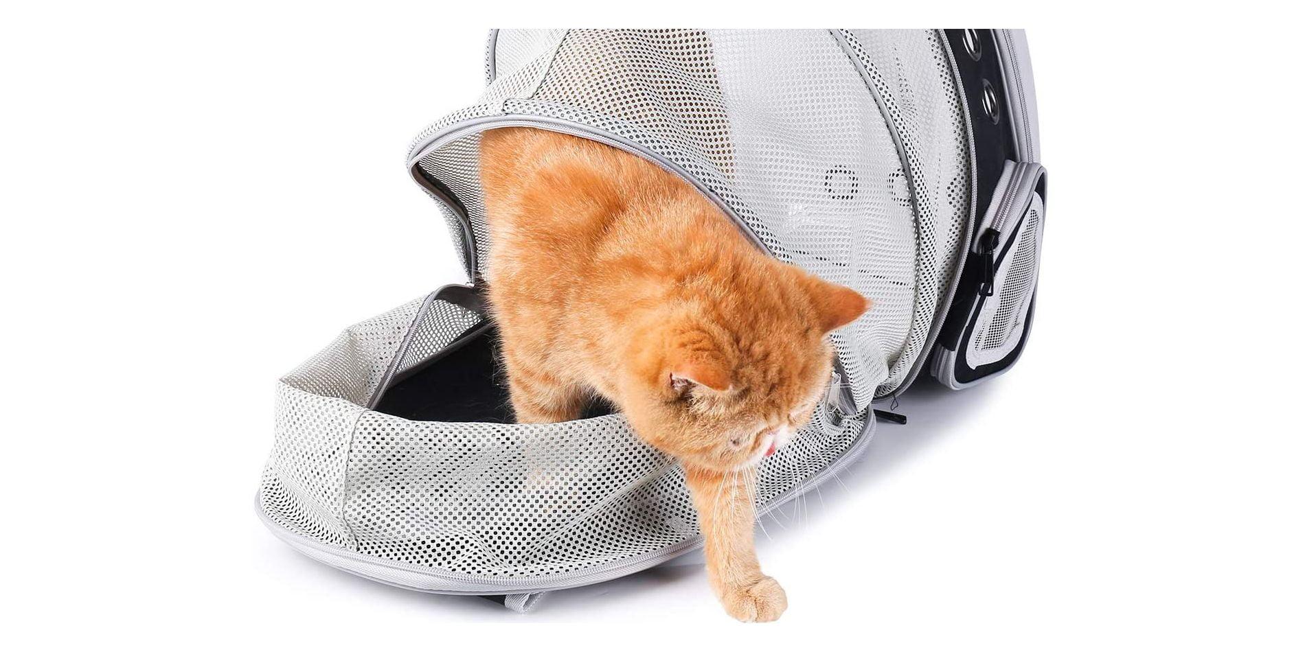 mejores mochilas para gatos