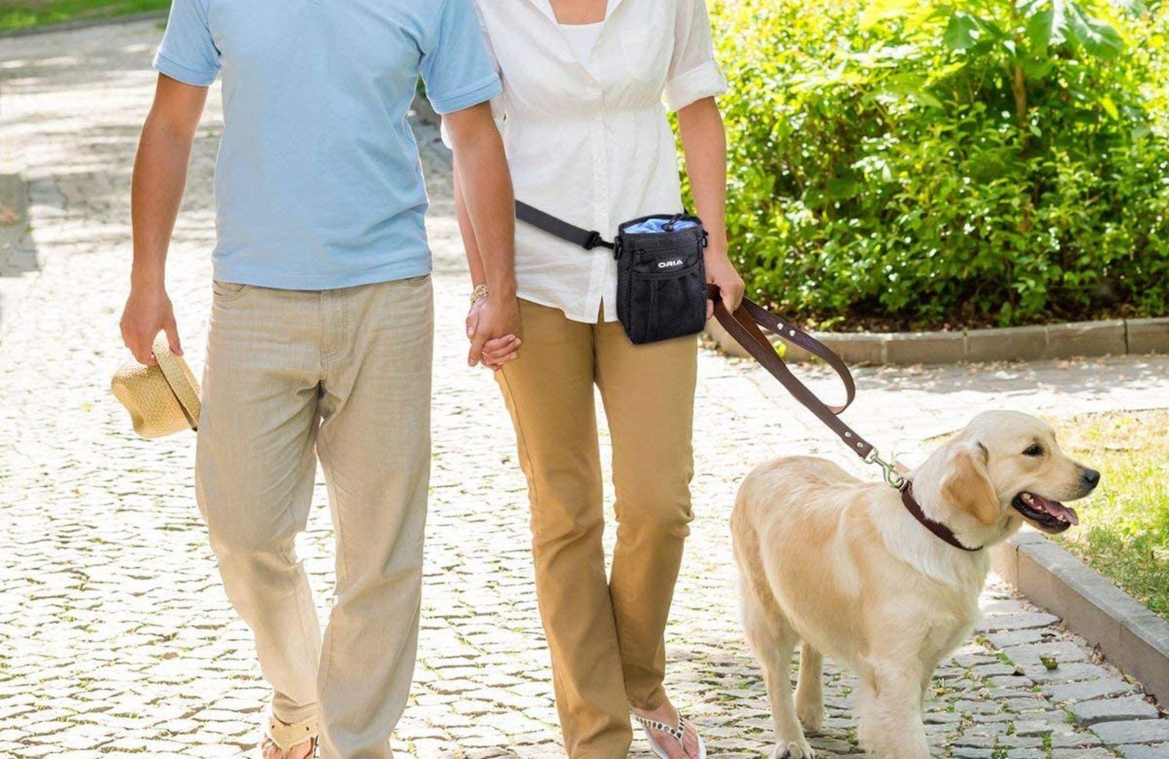 Las mejores bolsas de adiestramiento para Perros [year] (análisis) 1
