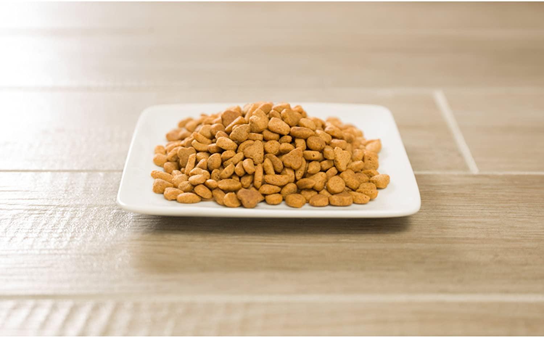 Análisis de la comida para gatos Purina Pro Plan 1