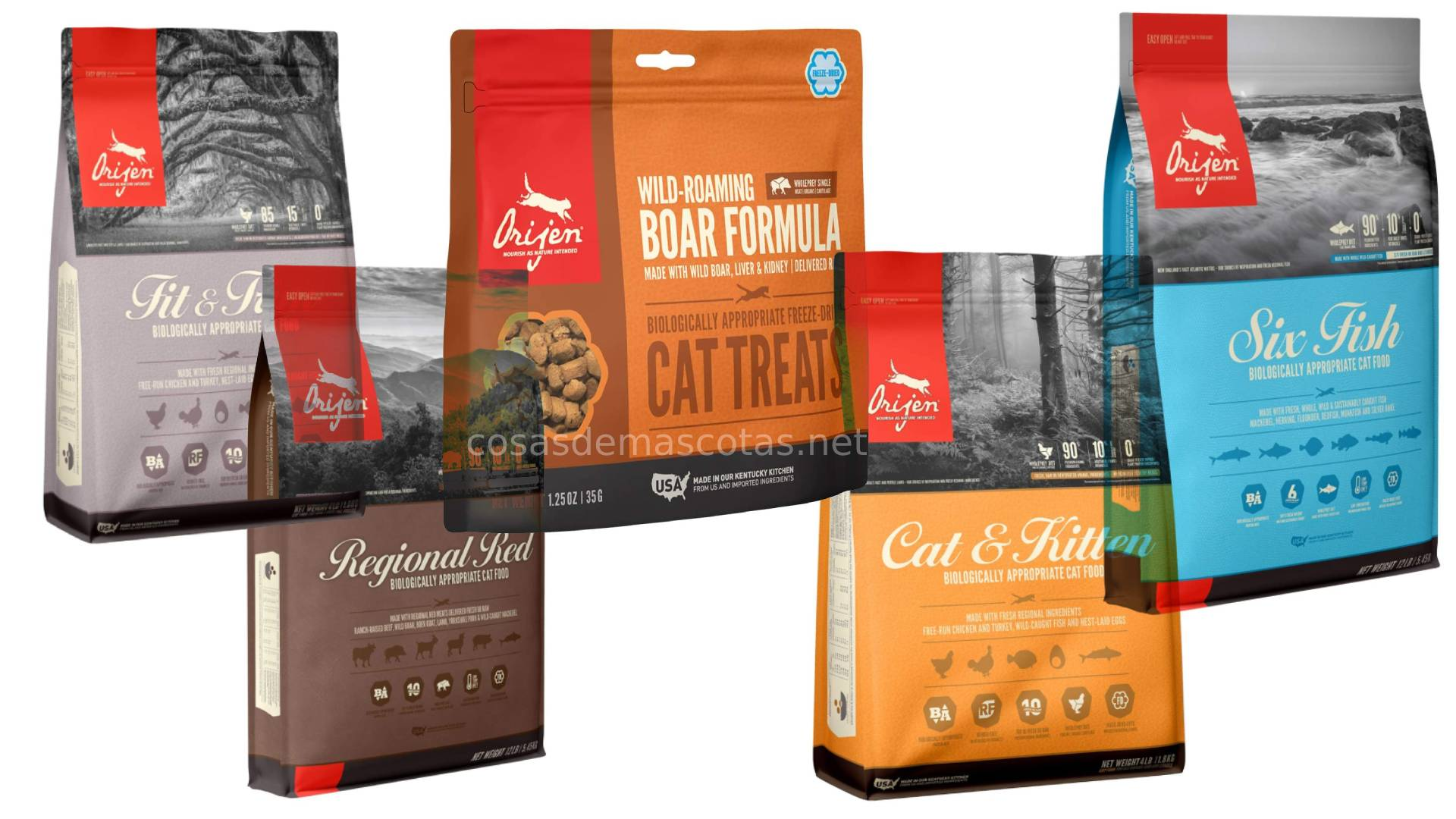 Análisis de la comida para gatos Orijen 1