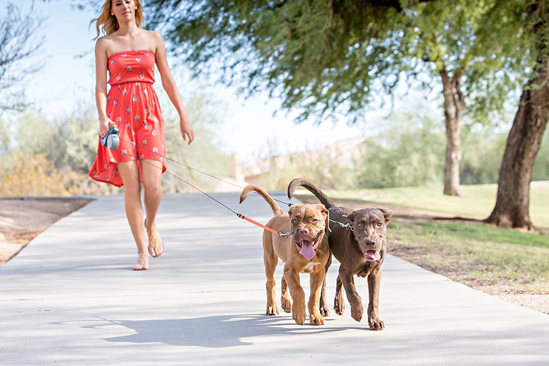 Mejores correas dobles para perros [year] (Análisis) 1