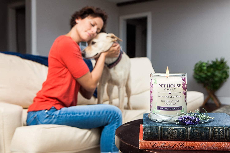 Mejores velas para el olor de las mascotas [year] (análisis) 1