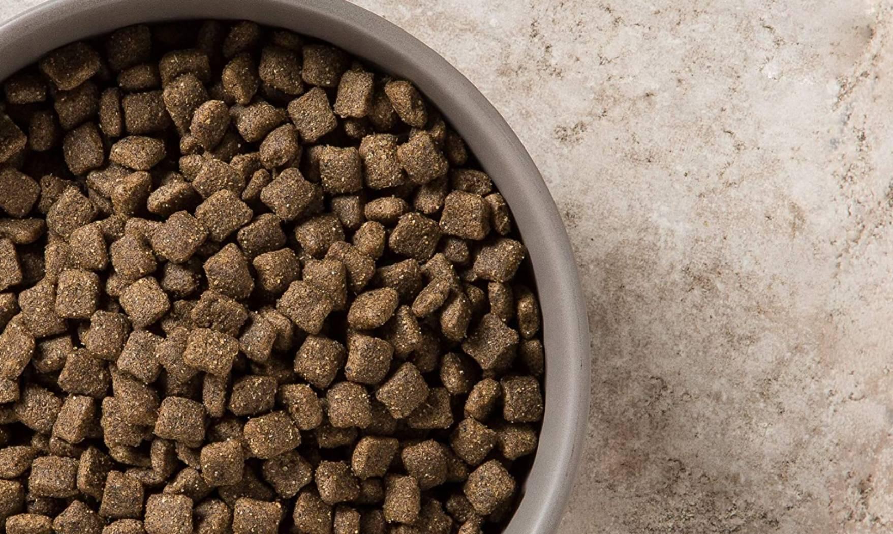 comida de cordero para perro